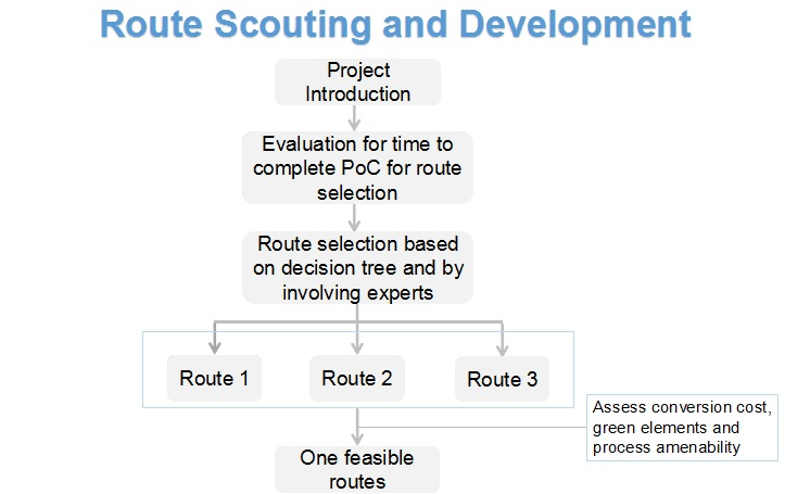 Route Scouting and Development